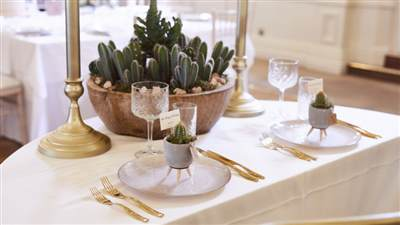 Cactus Wedding Decorations